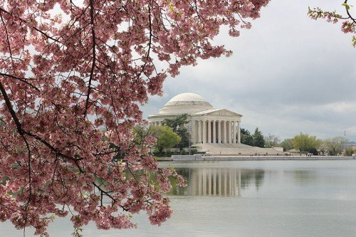 5 Reasons DC is My Favorite City
